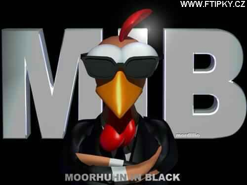 Moorhuhn in black