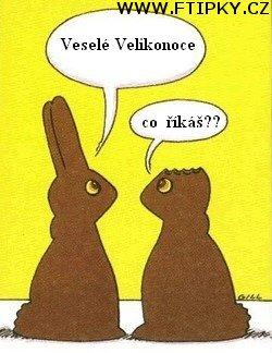 Veselé velikonoce | Vtipné foto a srandovní obrázky | KOMIK.CZ